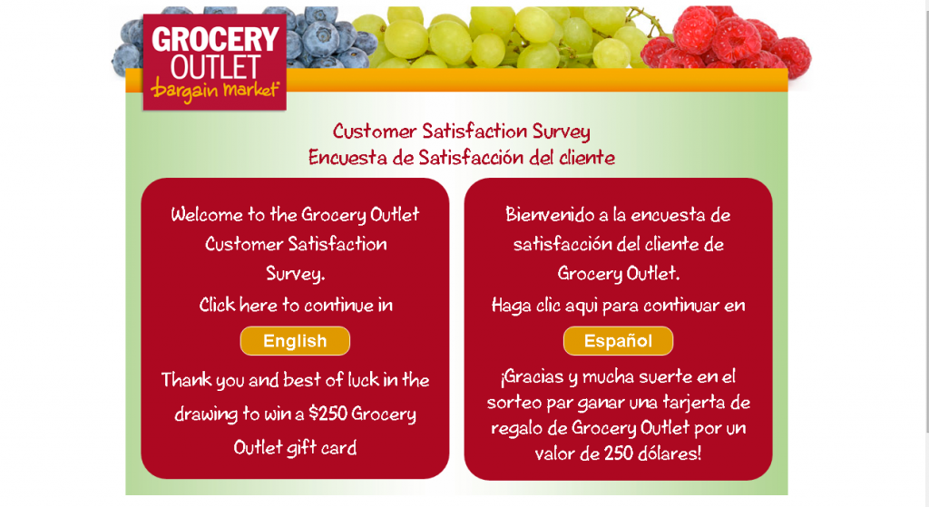 grocery outlet client satisfaction survey main page screenshot