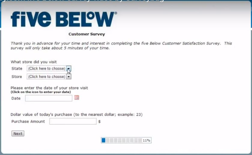 Five Below Survey Guide