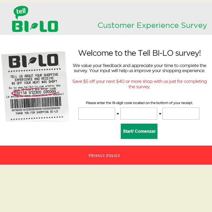 BI-LO Survey Guide
