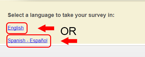 autozone survey language selection step