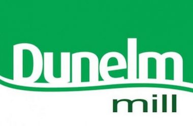 dunelm mill survey